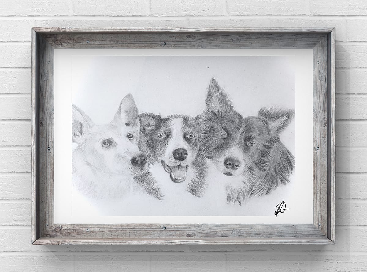 dog pet portrait drawing Harold Hill Harold Wood Gidea Park Hornchurch Romford Collier Row Rush Green Noak Hill